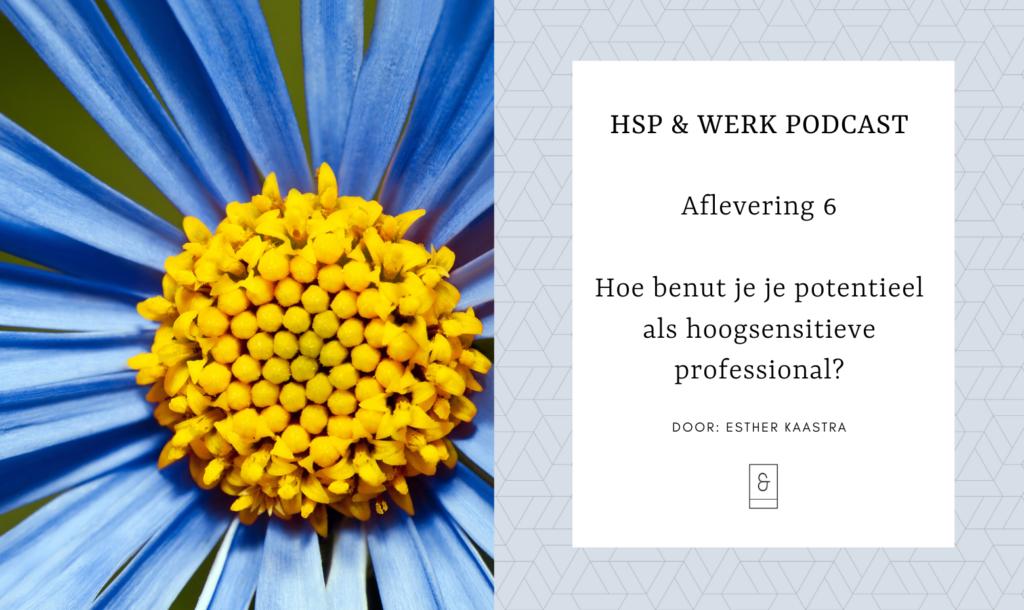 Hoe benut je je potentieel als hoogsensitieve professional?